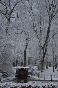 winterse Brink